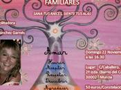 Taller Constelaciones Familiares -Murcia
