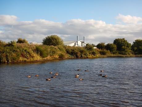 Ruta por Inverness: islas del Ness, canal de Caledonia y fiordo de Beauly