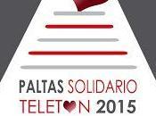 PALTAS SOLIDARIO, Teletón 2015. Ayúdanos ayudar