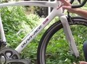 Shimano Neutral Support Bike
