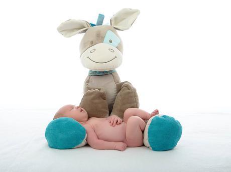 Nattou, la marca más suave del mundo del bebé