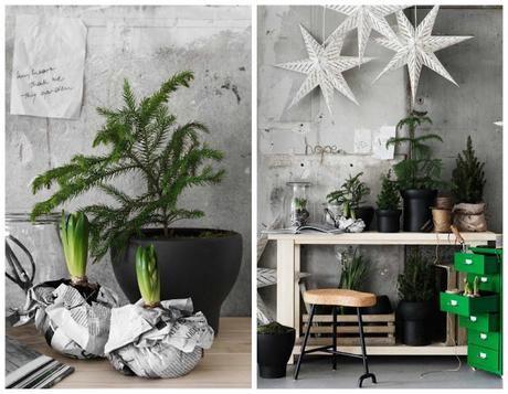 Peque os rboles de navidad paperblog - Arboles de navidad pequenos ...