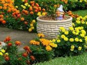 Eco-jardinería