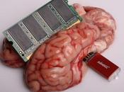 """trabaja procesador funciona """"Sangre Electrónica"""""""