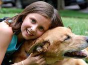 animal juguete, enseña valiosa lección hijos