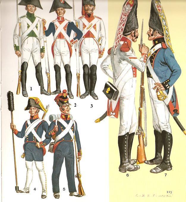 LA CRISIS DE 1808 Y LA GUERRA DE INDEPENDENCIA ESPAÑOLA (II)