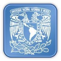 Becas TIC Mexico 2011