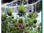 Libro jardines contemporaneos stephen woodhams paperblog - Illescas garden ...