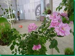 Jardines de cuerda string gardens paperblog - Illescas garden ...