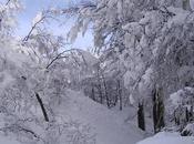 Chispazos invernales