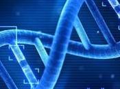 obesidad genética? ¿Cómo genes influyen peso?