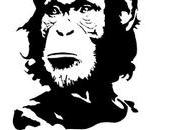 ChimpanCHE Guevara?