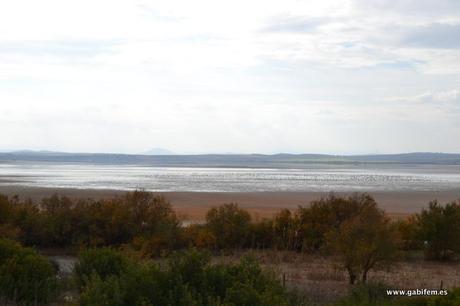 Laguna de Fuente Piedra
