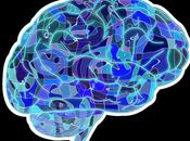 Terapias neurocientíficas: nuevo cuerpo terapias