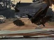 pájaros (The birds, Alfred Hitchcock, 1963. EEUU)