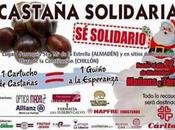 Castaña Solidaria Almadén Chillón