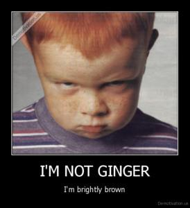 ginger_I am not