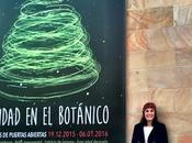Navidad Jardín Botánico Gijón Rogado