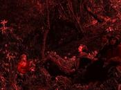 Tendencias estéticas cine portugués contemporáneo