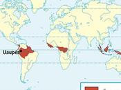 climas tierra: clima ecuatorial