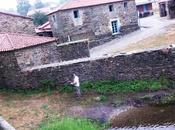 Camino santiago: melide-ribadiso baixo. (camino francés)