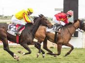 Resumen carreras domingo enero Gran Hipódromo Andalucía
