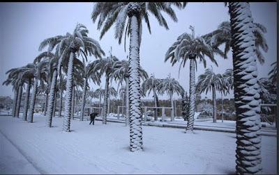 Arabia Saudí registra su primera nevada en 85 años
