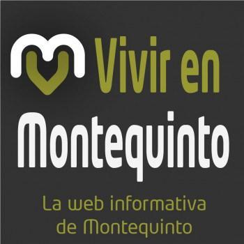 BM Montequinto Monterero firma una sensacional Primera Fase del Campeonato Juvenil Andaluz con 9 triunfos y una derrota