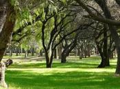 Parque Tangamanga contará unidad alto rendimiento