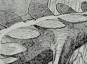 Stegosaurus volador