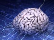 cerebro siempre está despierto