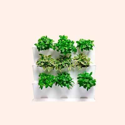 C mo hacer un huerto urbano en casa paperblog for Calentadores para jardin tipo hongo