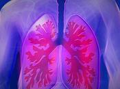 mayor consumo fibra podría mejorar función pulmonar
