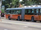 Nuevo lote ómnibus recorrerá Habana