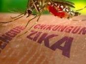 Zika: ¿qué papel juega acción hombre?
