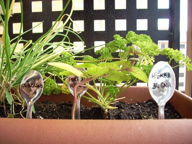 El huerto de hierbas arom ticas vitamina d paperblog - Huerto de plantas aromaticas ...