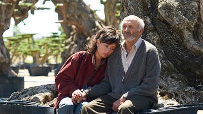 El Olivo, un peliculón que no debes perderte @elolivofilm @morenafilms #elOlivoBollain #Cine #Educaycine
