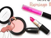 best Flamingo Park Collection