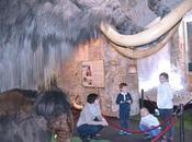Visita guiada Museo Mamut