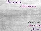 cielo ajedrez Antonio Agudelo
