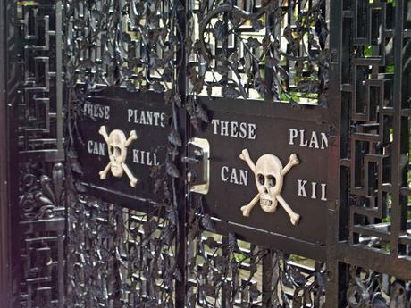 El Versalles del norte: el jardín venenoso de Alnwick