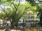 recreo plaza delicias mantenimiento jardineria