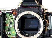 Esta permite comprender anatomía cámaras