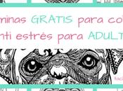 ARTETERAPIA: láminas para colorear GRATIS anti estrés ADULTOS