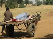 Camino hospital