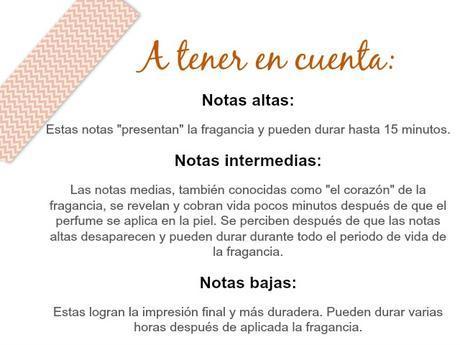 Notas_olfativas_fragancias