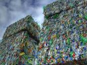 Esta bacteria almuerza plástico desintegra
