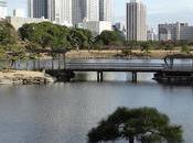 Tokio; jardines Hamarikyu sótanos estación Tokio