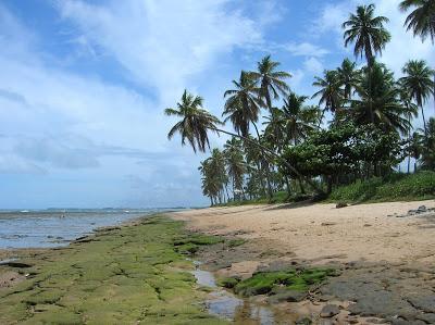 Praia do Forte, Brasil, La vuelta al mundo de Asun y Ricardo, round the world, mundoporlibre.com