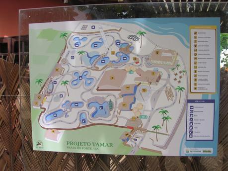 Plano de Proyecto Tamar, Praia do Forte, Brasil, La vuelta al mundo de Asun y Ricardo, round the world, mundoporlibre.com